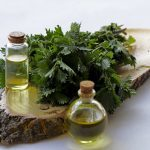 Настойка крапивы на водке – приготовление и применение