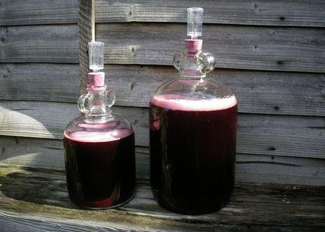 Вино не хочет бродить, что делать - ответ