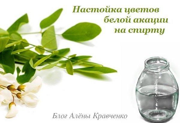 Питьевая настойка акации на водке, спирте и самогоне