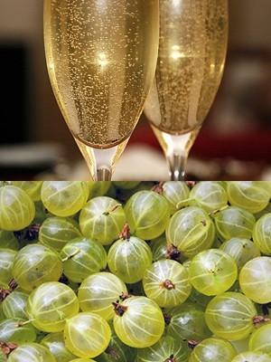 Вино из крыжовника в домашних условиях – рецепт и технология