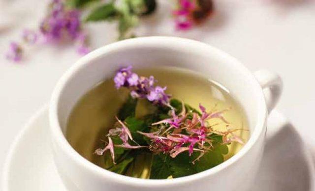 Питьевая настойка Иван-чая на самогоне, водке, спирте