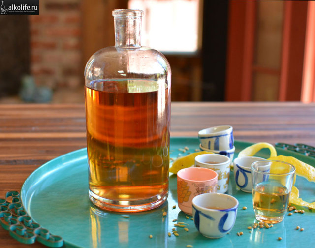 Питьевая настойка укропа на водке (спирте, самогоне) – рецепт