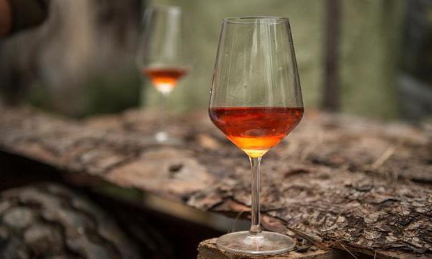 Вино из облепихи в домашних условиях - правильный рецепт