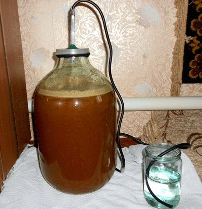 Настойка из белой смородины в домашних условиях – рецепт