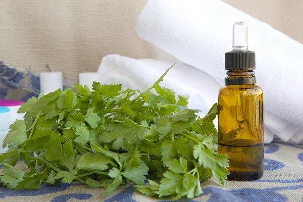 Настойка петрушки – рецепт на листьях и корне, применение