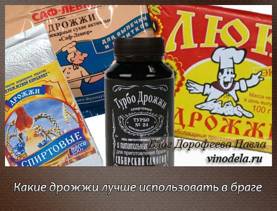 Лучшие дрожжи: спиртовые, сухие, прессованные или винные?