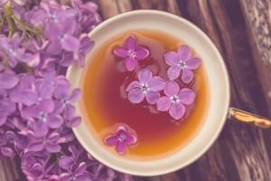 Настойка сирени на водке и спирту: рецепт и применение