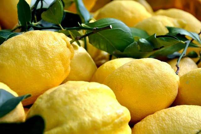 Вино из лимонов в домашних условиях – правильный рецепт