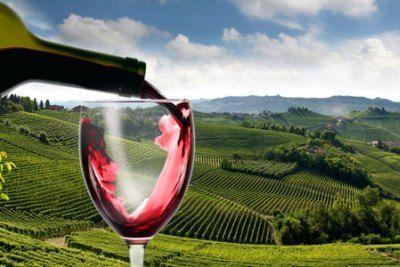 Вино Бароло (barolo): особенности, история, культура пития