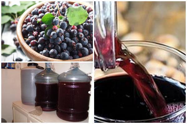 Вино из ирги в домашних условиях - рецепт приготовления