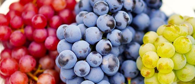 Аллергия на вино: причины, симптомы и методы лечения