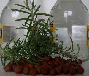 Настойка на можжевельнике: рецепт на водке (самогоне, спирту)