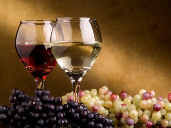 Вино Алазанская долина: понятие, виды, особенности выбора