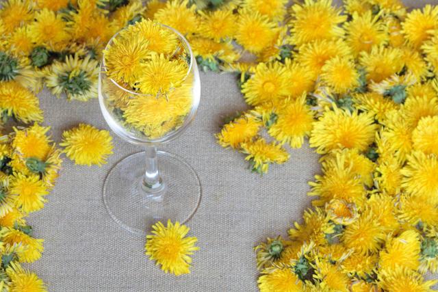 Вино из липы (цвета) в домашних условиях – рецепт