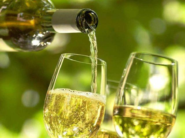 Можно ли пить вино беременным женщинам – ответ врачей